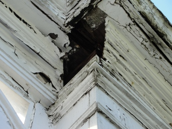 Wood Rot (This Gallery is owned by RetroRevival)