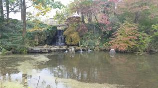 meditation garden from south facing field